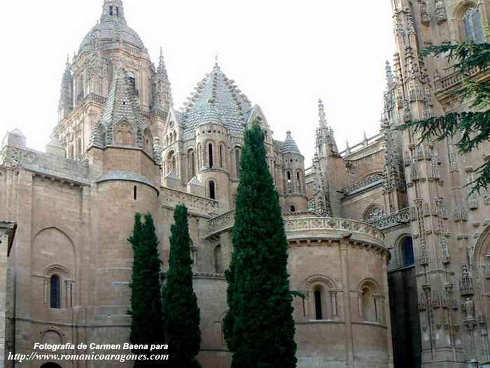 catedral vieja de santa maria de la sede salamanca