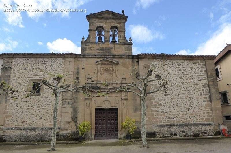 ermita de santa maria la real del campo castildelgado 1