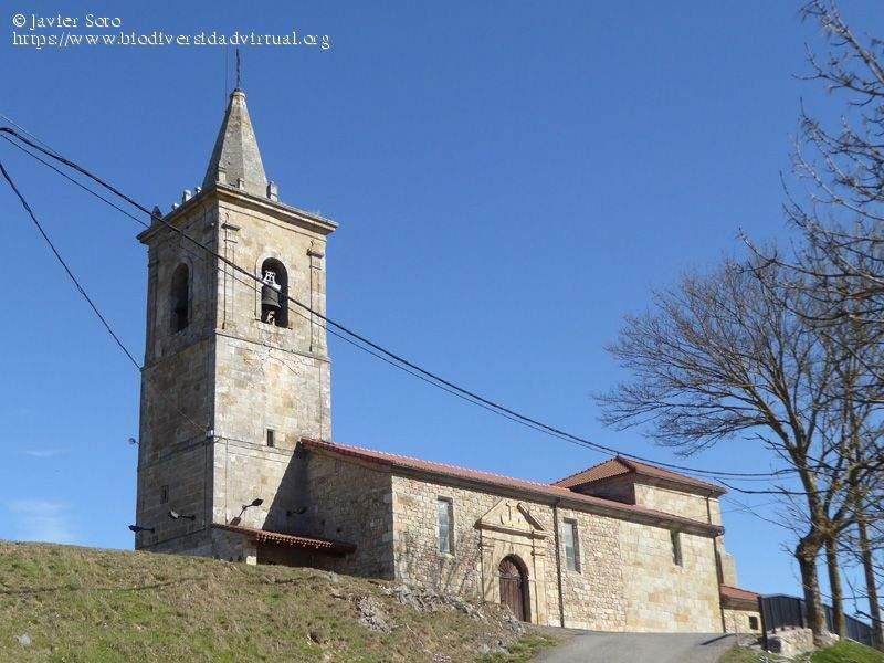parroquia de requejo requejo