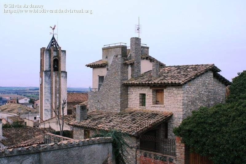 parroquia de san esteban estadilla