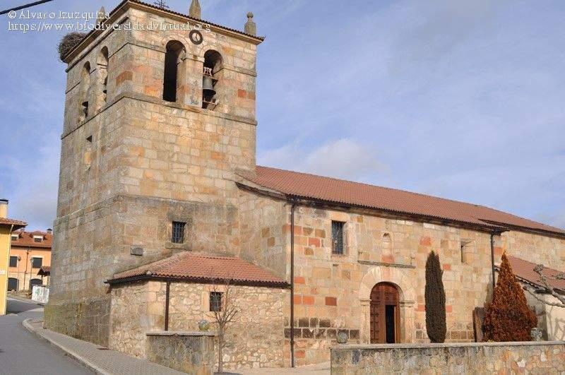 parroquia de san esteban protomartir navaleno