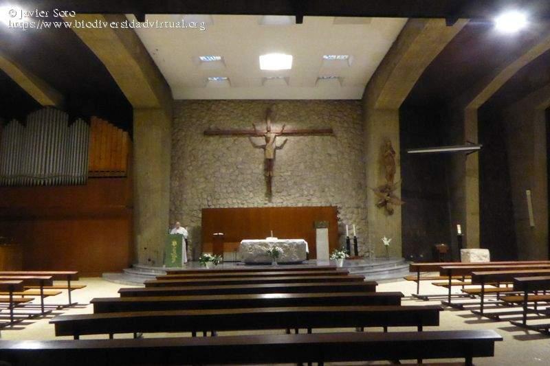 parroquia de santa maria de los angeles franciscanos santander