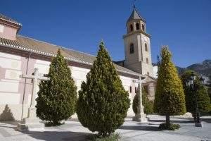 Parroquia de Santa María la Mayor (Padul)