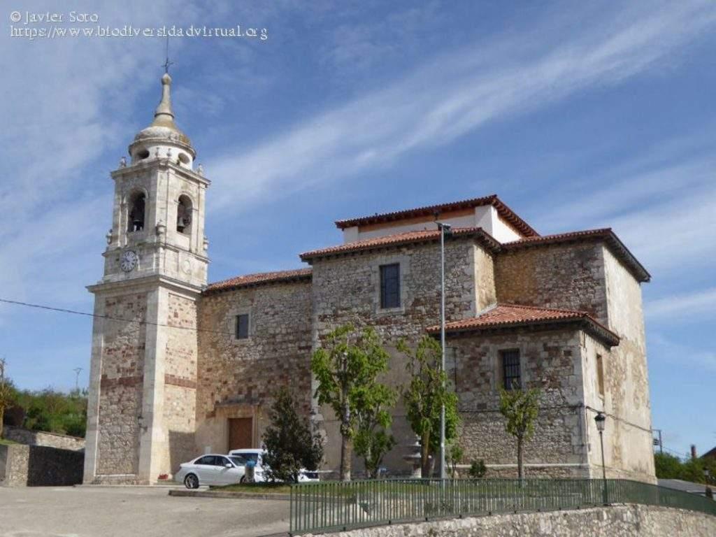 parroquia de santiago apostol villafranca montes de oca