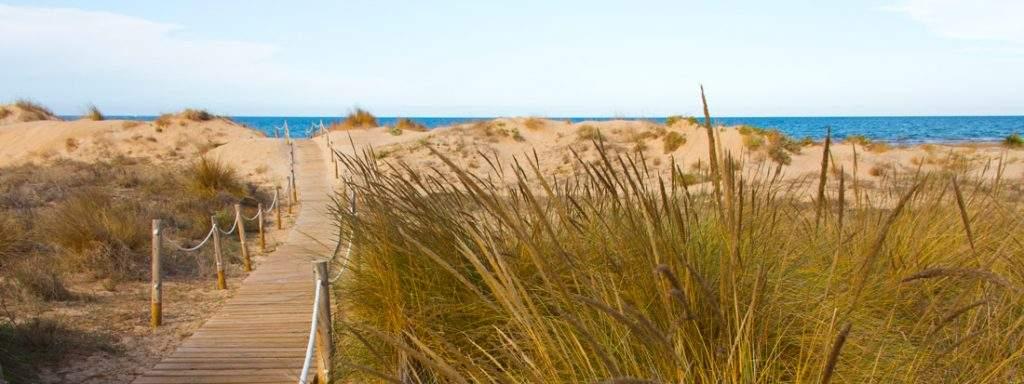 playa de oliva oliva